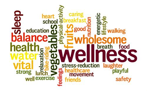 Wellness Plan